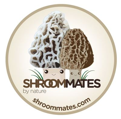 "Picture of ShroomMates ""by Nature"" Circle Window Sticker"